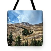 View From Guanella Pass Road Tote Bag