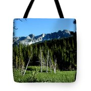 View From Lake Mary Tote Bag