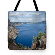 View From Merriam Point Tote Bag