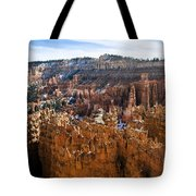 View From Rim Trail Tote Bag