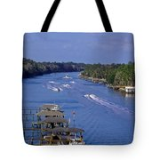 View From The Bridge Of Lions Tote Bag