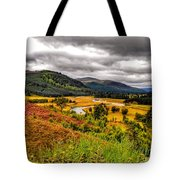 View From The River Dee Tote Bag