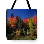 View In The Appalachian Mountains Tote Bag