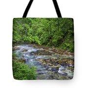 View In Vintgar Gorge - Slovenia Tote Bag
