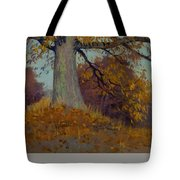 View Of A Harbor By Charles Francois Lacroix Tote Bag