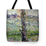 View Of Arles Tote Bag