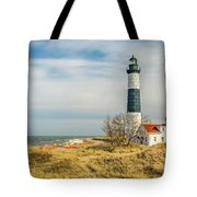 View  Of Big Sable Point Michigan Tote Bag