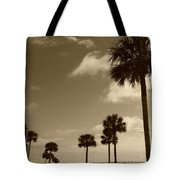 View Of Castillo De San Marcos Tote Bag