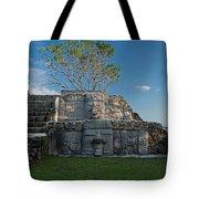 View Of Cerros Maya Ruins At Cerros Tote Bag