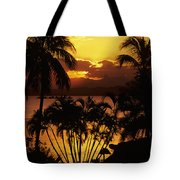 View Of Fiji Tote Bag