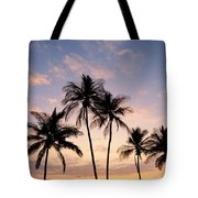 View Of Palms Tote Bag
