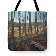 View Of Parkers Creek Tote Bag
