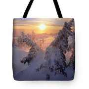 View Of Snow-covered Trees At Mont Tote Bag