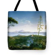 View Of The Bay Of Pozzuoli Tote Bag