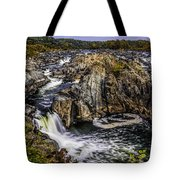 View Of The Great Falls Tote Bag