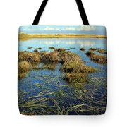 View Of The Marsh Tote Bag