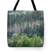 View Of The Mixed Forest Tote Bag