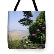 View Of Tramore Tote Bag