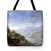 View On The Rhine Tote Bag