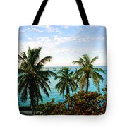 View To The 7 Mile Bridge Tote Bag