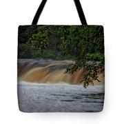 Viewing Tahquamenon Lower Falls Upper Peninsula Michigan 02 Tote Bag