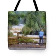Viewing Tahquamenon Lower Falls Upper Peninsula Michigan Pa Tote Bag