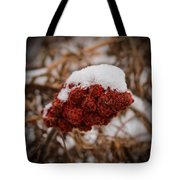 Vignettes - First Snow 1 Tote Bag