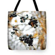 Vignettes - Indigo Winter Berries Tote Bag