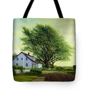 Village Road Orient  16x20 Tote Bag