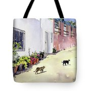 Village Street With Cats In Hortichuelas Tote Bag