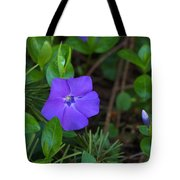 Vinca Blooming In The Forest Tote Bag