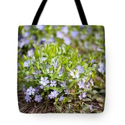 Vinca Violet Purple Clump Tote Bag