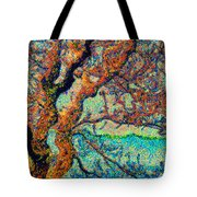 Vincent At Duxbury Bay Tote Bag