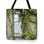 Vine-covered Mysteries I Tote Bag