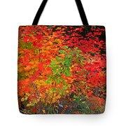 Vine Maple In Oregon Tote Bag