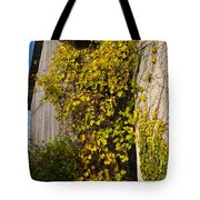 Vined Silo Tote Bag