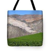 Vineyards In The Atacama Desert Chile Tote Bag