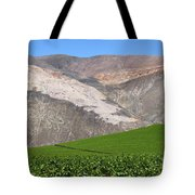 Vineyards In The Atacama Desert Chile Tote Bag