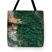 Vines On The Rocks Tote Bag