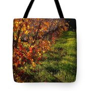 Vineyard 13 Tote Bag