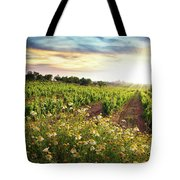 Vineyard Tote Bag by Carlos Caetano