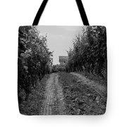 vineyard of old BW Tote Bag