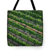 Vineyard Rows - Slovenia Tote Bag