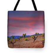Vineyards At Sunset In Spain Tote Bag