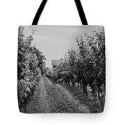 Vineyards Of Old Horizontal Bw Tote Bag