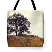 Vintage Autumn Tote Bag