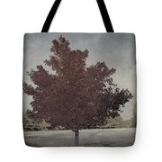 Vintage Autumn Moment Tote Bag