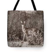 Vintage Deer Tote Bag
