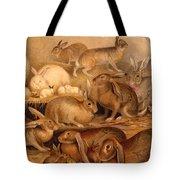 Vintage Rabbit Hutch Tote Bag