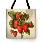 Vintage Strawberries Tote Bag
